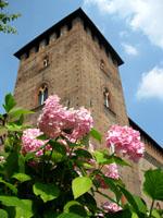 castello_visconteo_200