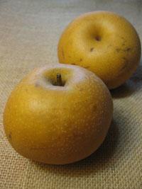 47dc37fb080 Fruits exotiques   Connaissez-vous le kivano   L anone   Le ...
