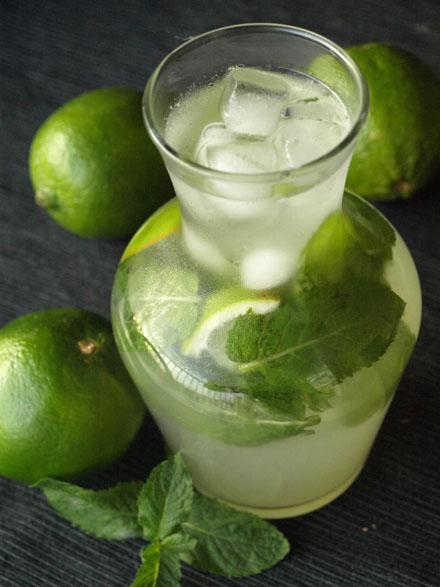 Mojito sans alcool cocktail menthe et citron vert for Alcool de menthe fait maison