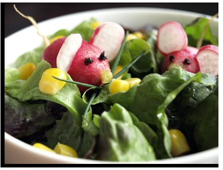 Radis souris cookismo recettes saines faciles et - Quand cueillir les radis ...