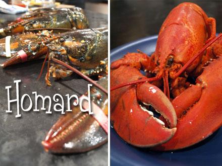 Cuisson du homard cookismo recettes saines faciles et - Comment cuisiner le homard ...