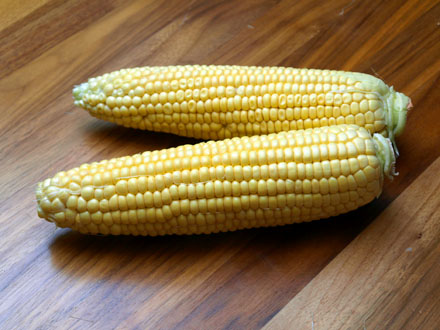 Epis de maïs ébarbés