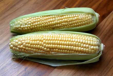 Epis de maïs frais et entiers