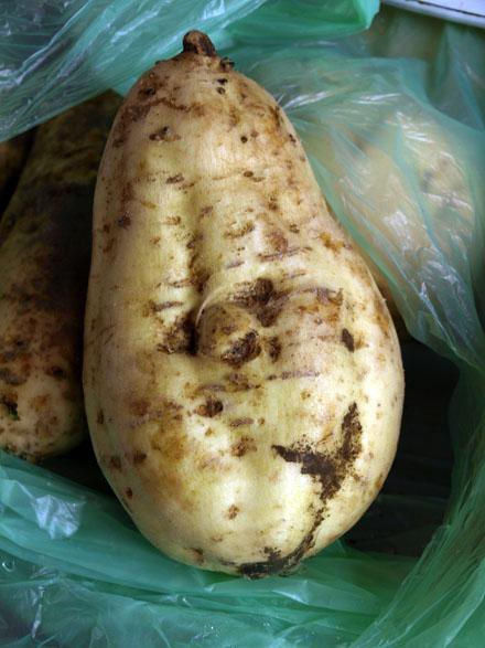 G teau de patates douces la vanille cookismo recettes saines faciles et inventives - Recette patate douce blanche ...