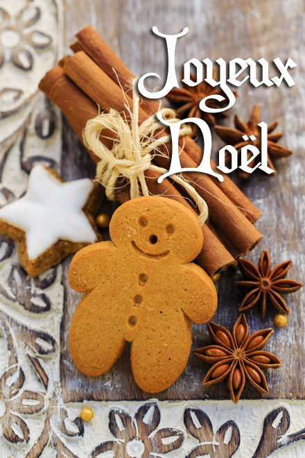 Christmas Spices, Gingerbread man - Christmas cookies @ Gorilla - Fotolia