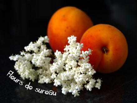 Abricots et fleurs de sureau