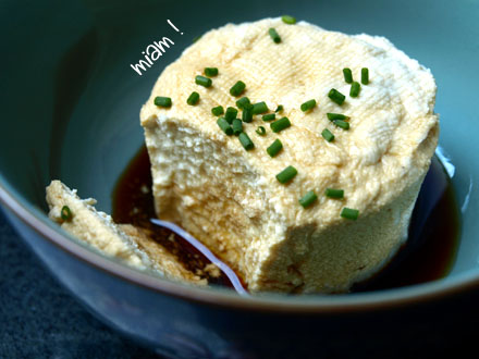 Dégustation du tofu maison