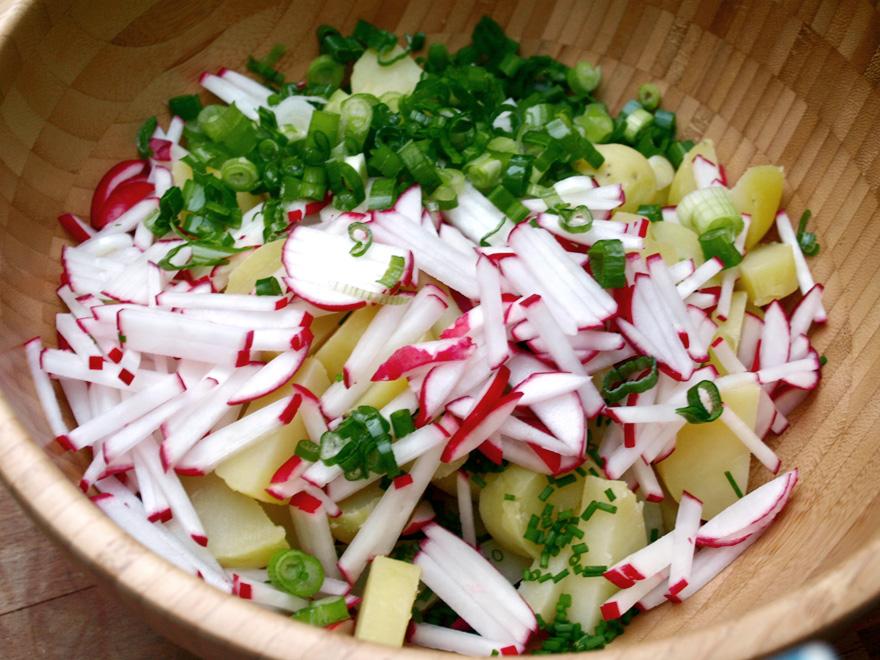 Ingrédients de la salade de pomme de terre, sans la sauce au fromage blanc