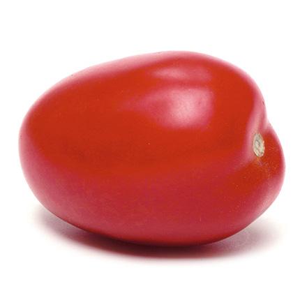 Tomate allongée  © Philippe DUFOUR-Interfel