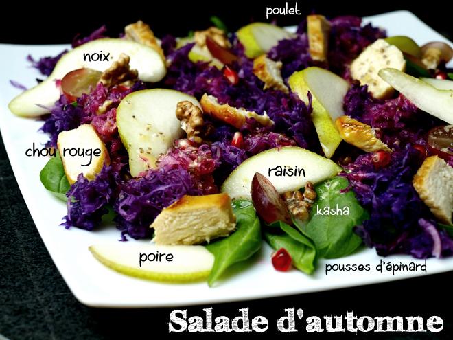 Salade de chou rouge, poire, kasha et poulet