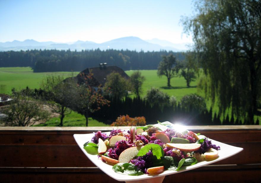 Dégustation de ma salade de chou rouge en terrasse #Autriche