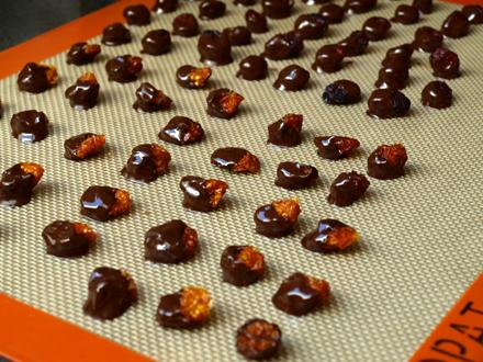Séchage des physalis et cranberries au chocolat