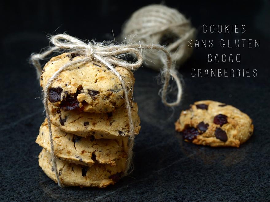 Cookies sans gluten aux pépites de cacao et cranberries