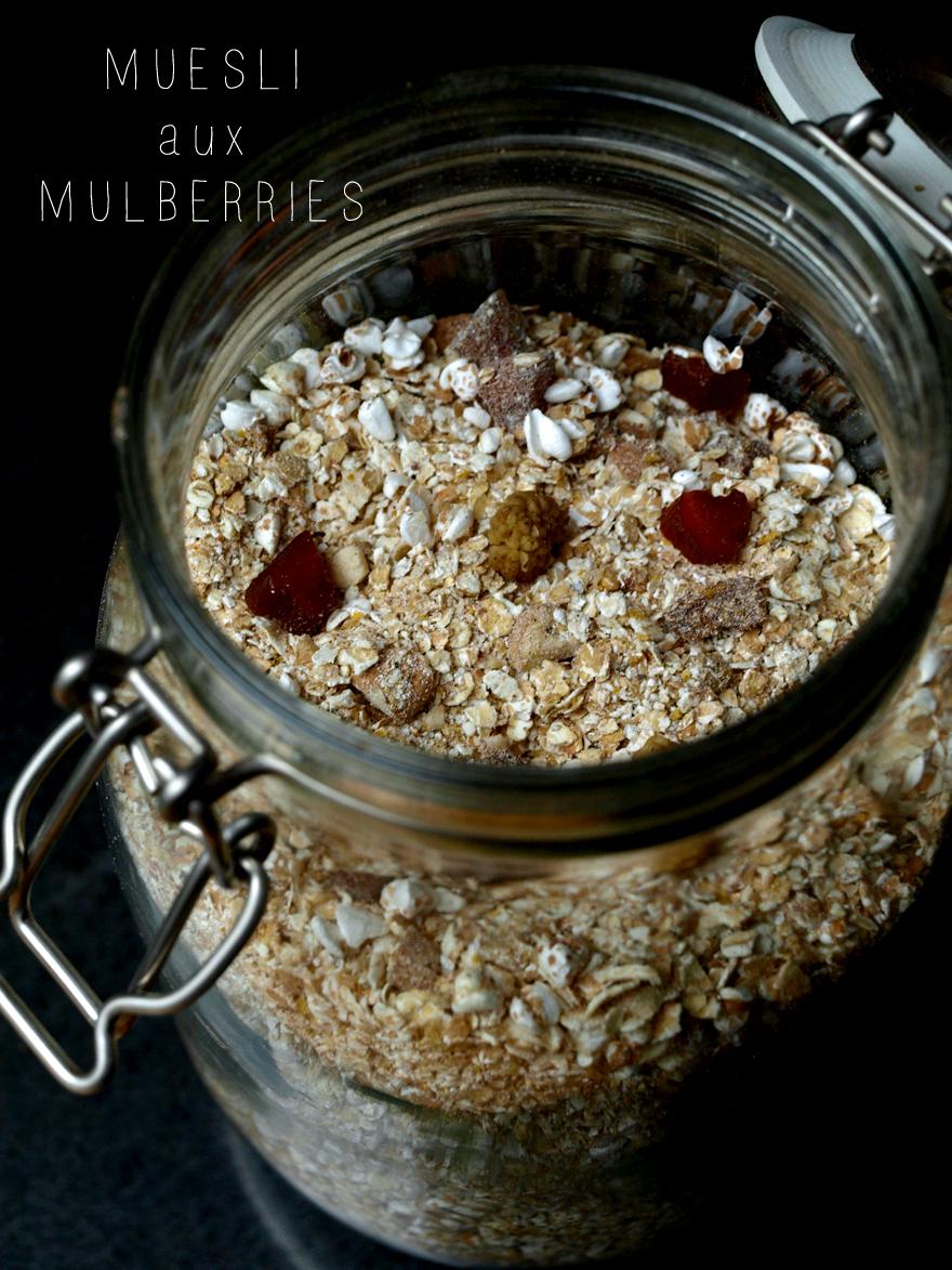Muesli maison aux mulberries