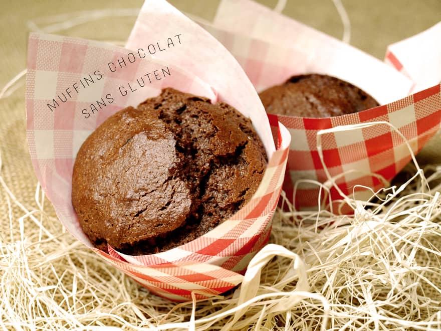 Muffin au chocolat sans gluten (à la farine de millet)