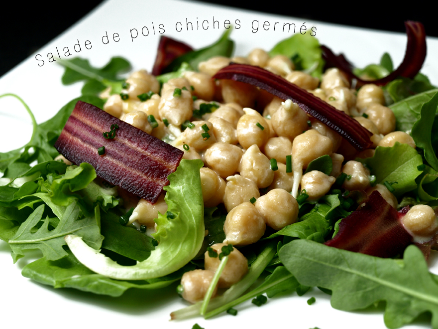 Salade de pois chiches germés