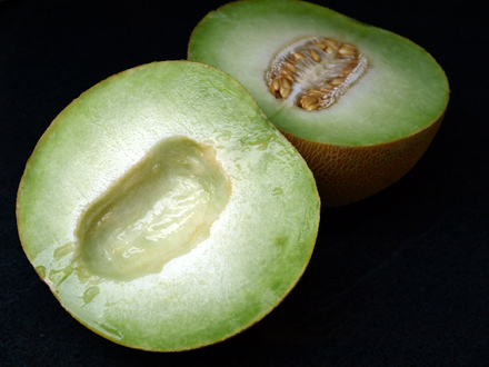 Melon galia tranché