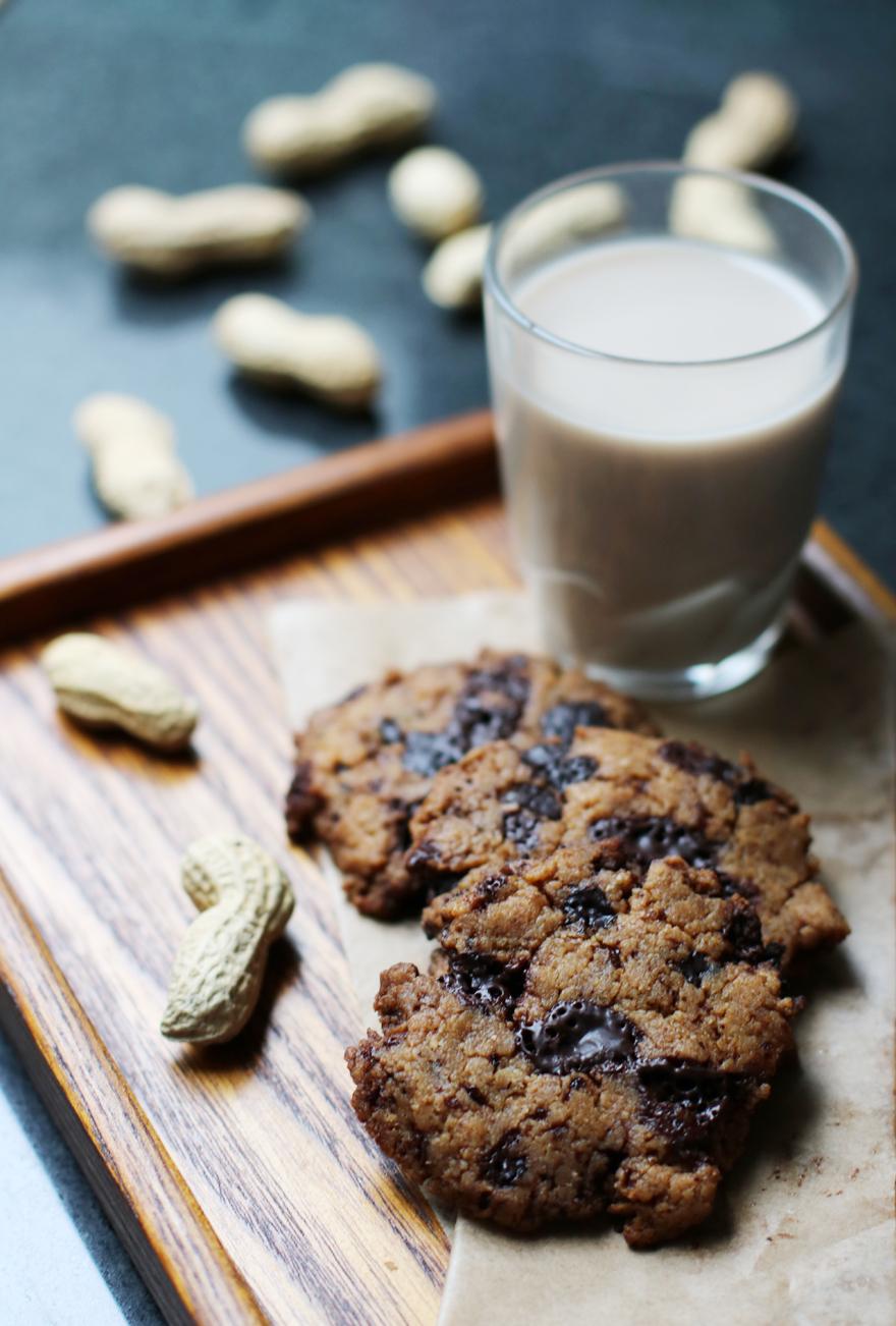 Cookies sans gluten/lactose (cacahuète, coco, chocolat)