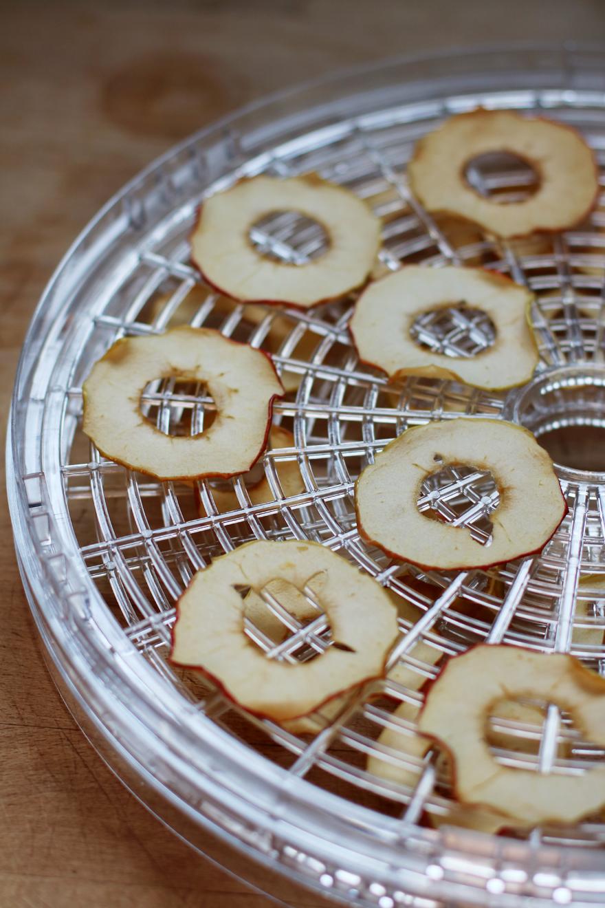 Chips de pommes au déshydrateur