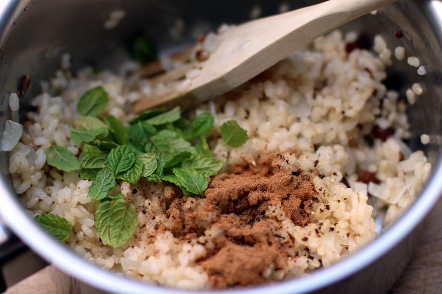 Ingrédients farce riz dolmades